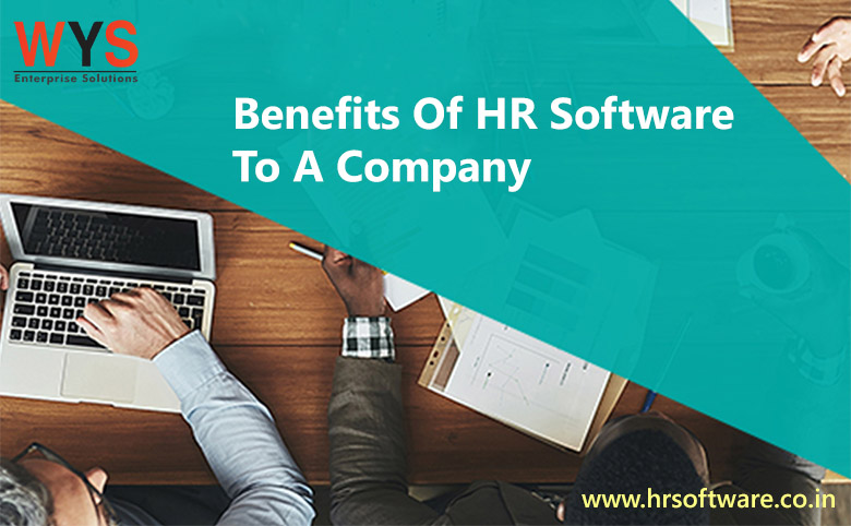 How Can HR Software Benefit a Company